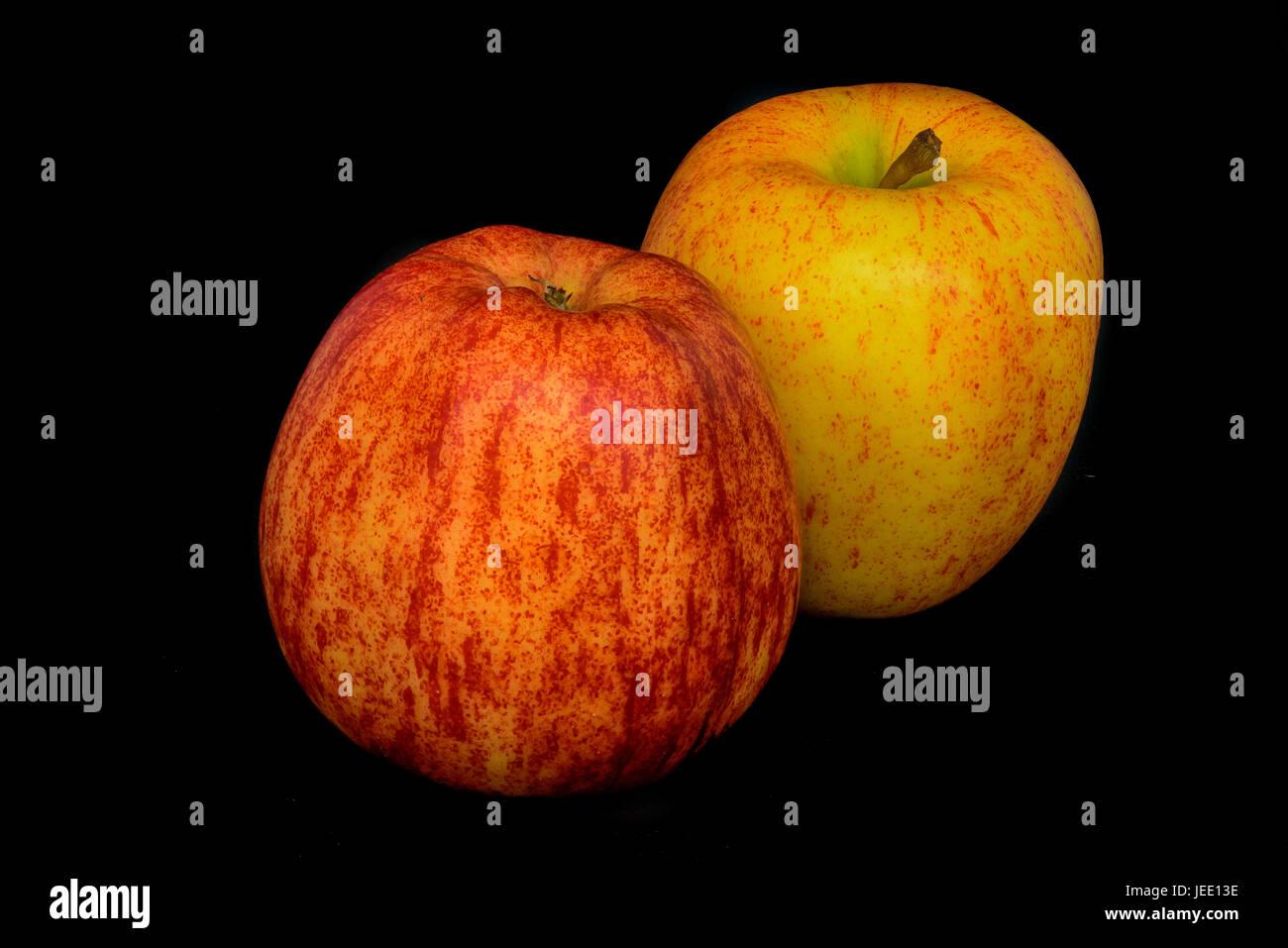 Still-Leben Farbe Makro Porträtgemälde von zwei Äpfel in rot und gelb auf schwarzem Hintergrund in Stockbild