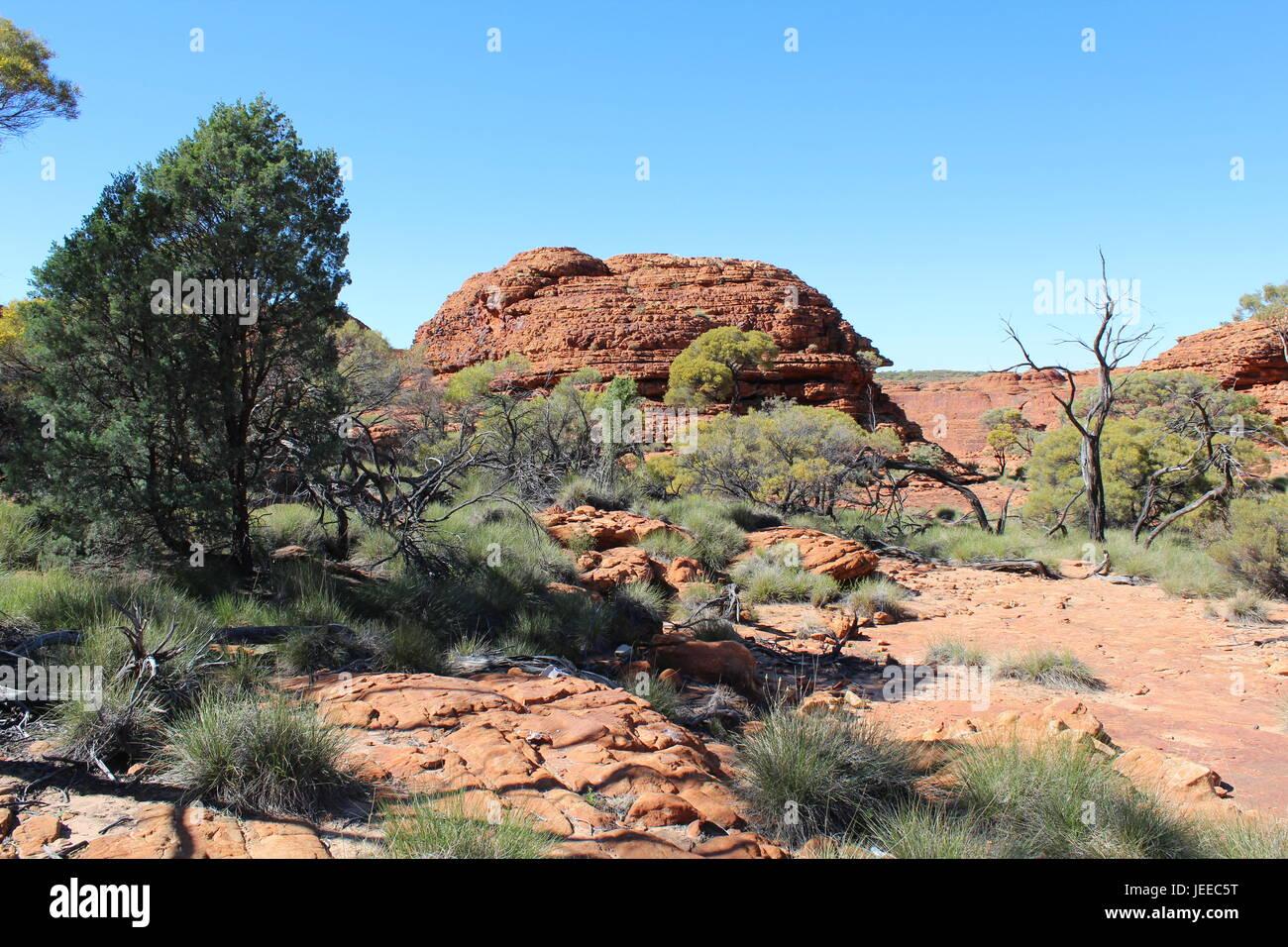 Landschaft am Kings Canyon im Northern Territory von Australien Stockfoto