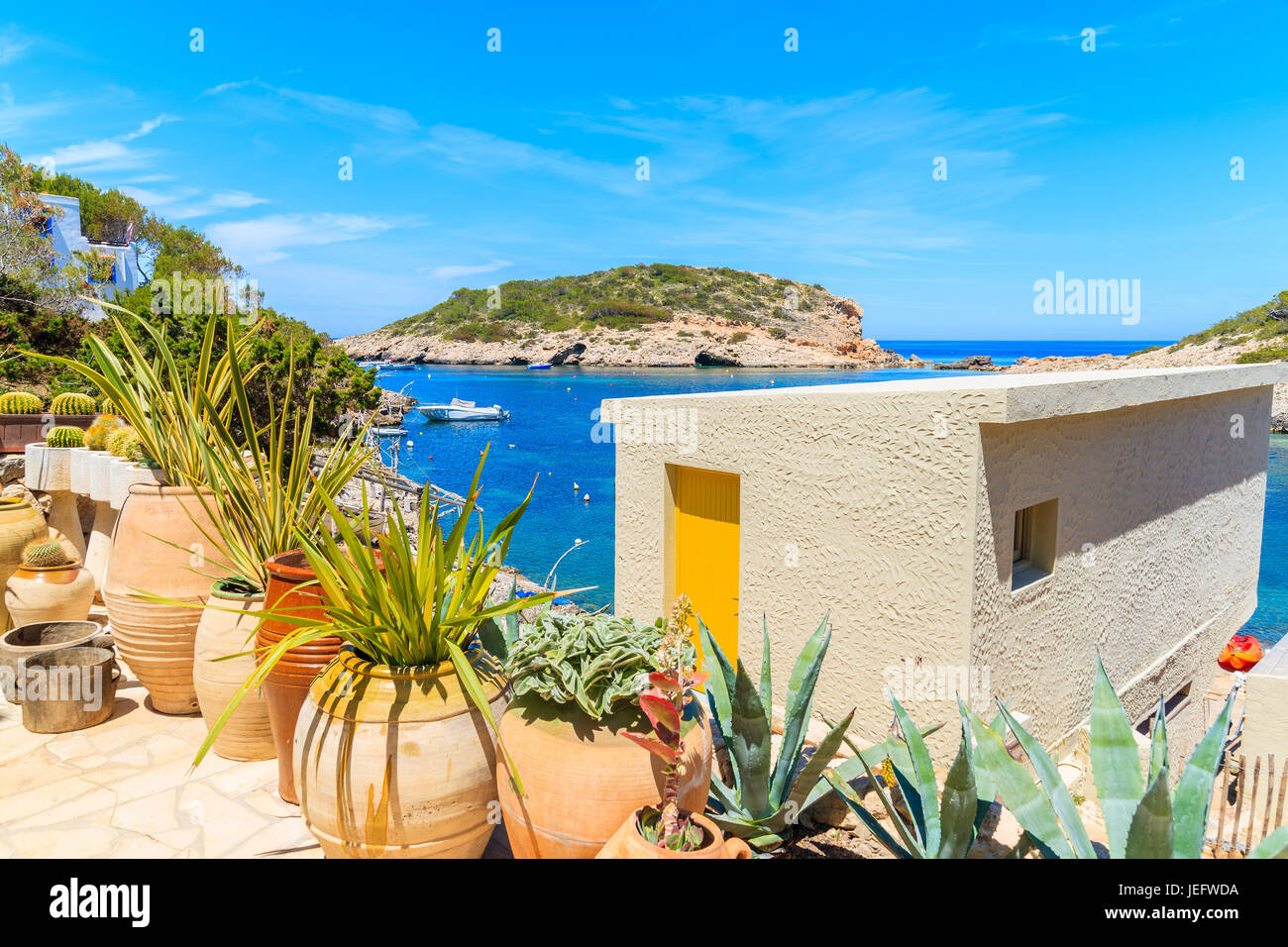 plants ibiza stockfotos plants ibiza bilder alamy. Black Bedroom Furniture Sets. Home Design Ideas