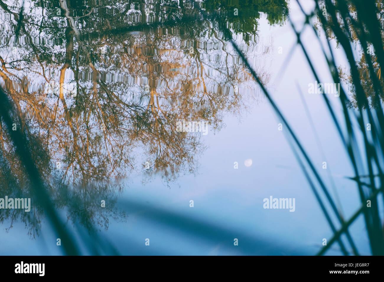 Mond-Spiegelbild im See Stockbild