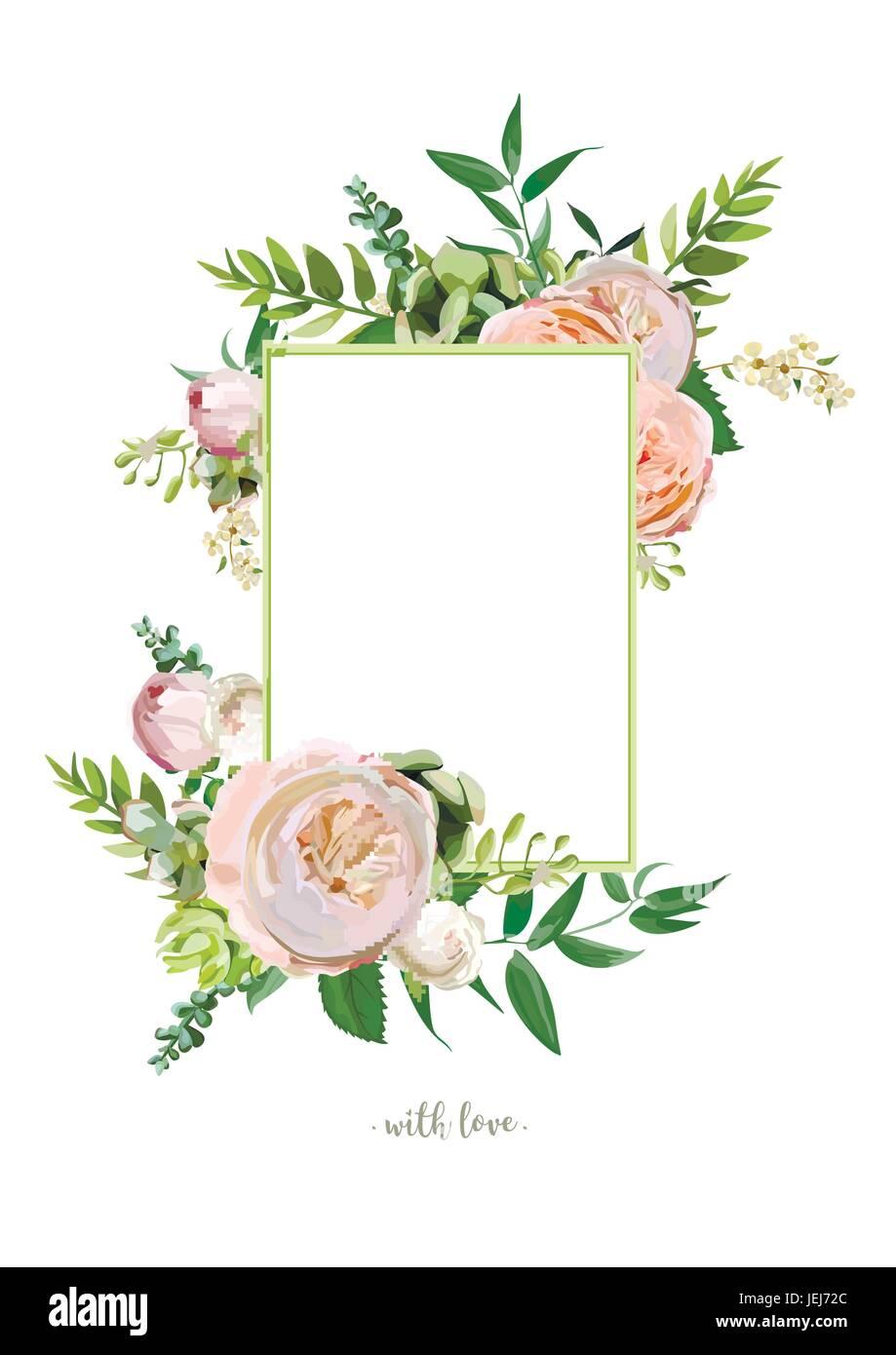vektor floralen design vertikale karte weiche rosa. Black Bedroom Furniture Sets. Home Design Ideas