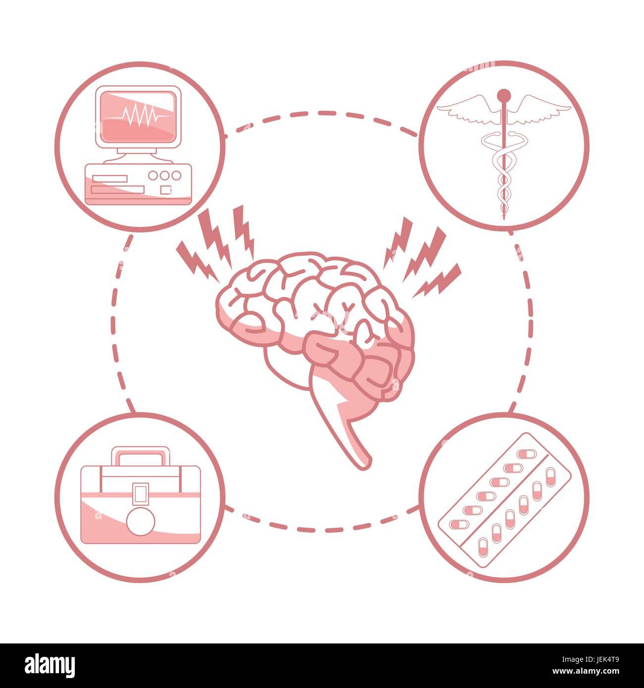Nett Markiertes Gehirn Diagramm Zeitgenössisch - Menschliche ...