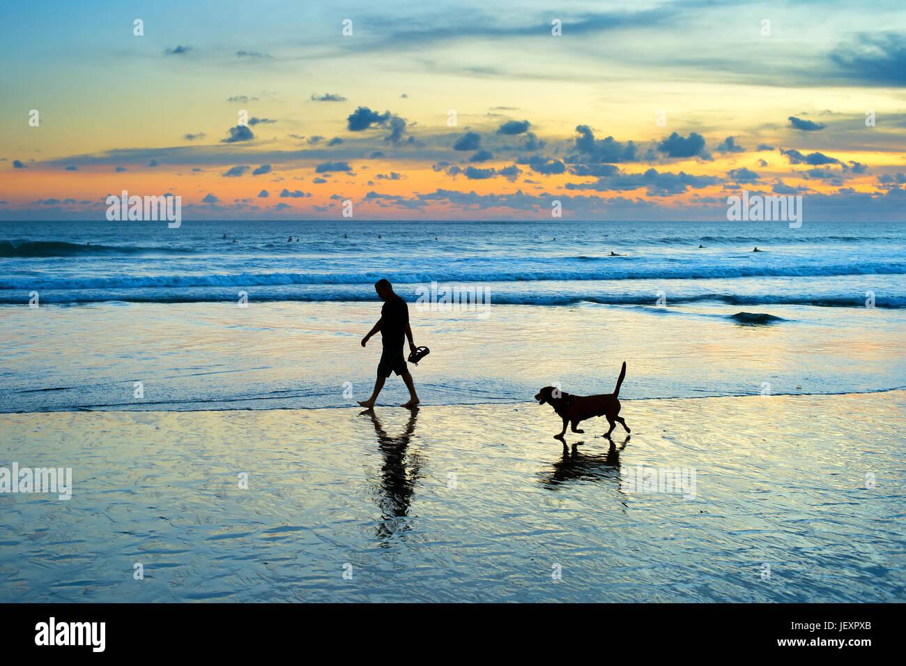 Silhouette von Mann und Hund spazieren am Strand bei Sonnenuntergang. Insel Bali, Indonesien Stockbild