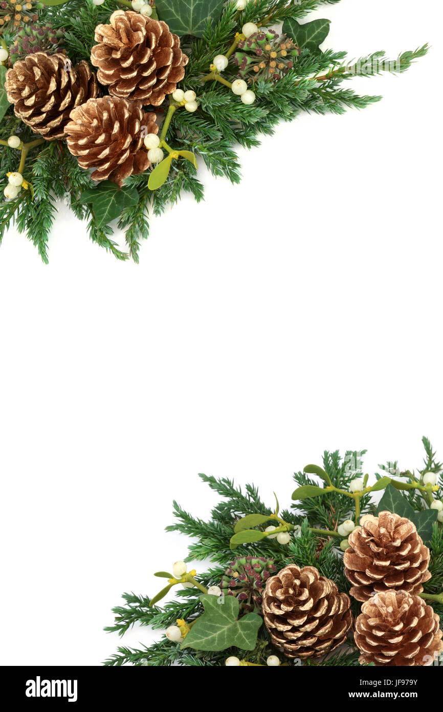 Weihnachten Hintergrund Rahmen mit gold Tannenzapfen, Mistel, Zeder ...