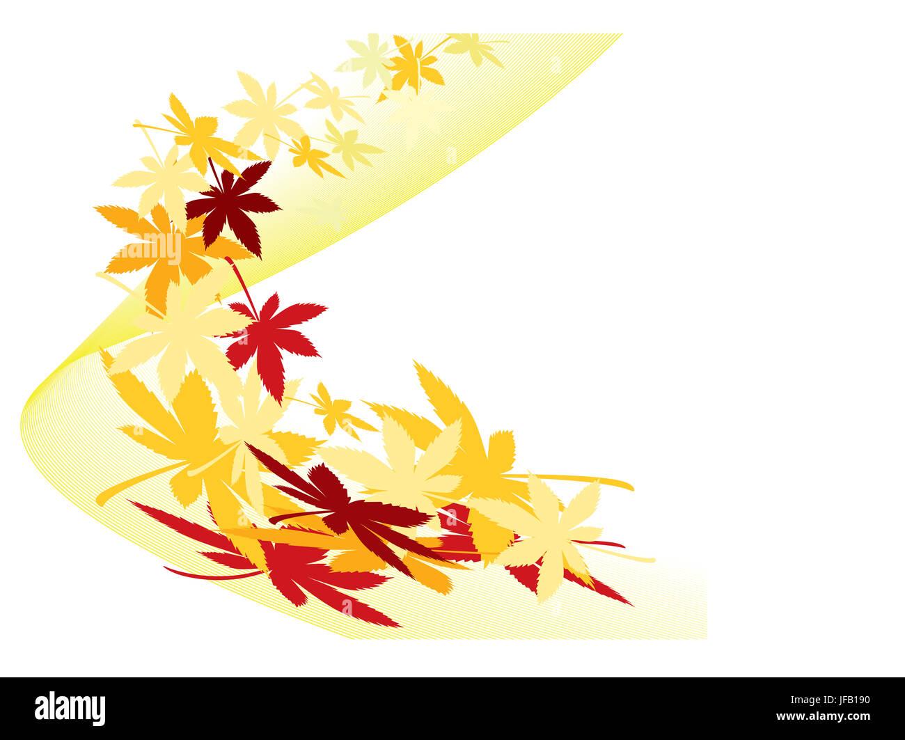 Herbstblätter Ahorn mit verschiedenen Schattierungen der Farben Stockbild