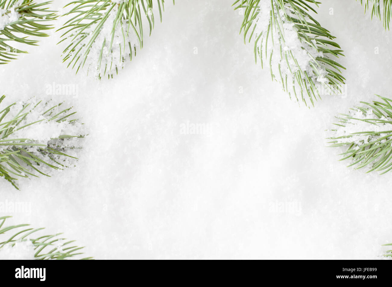 Künstliche Weihnachten Tanne Baum Wedel einen Rahmen um weiße ...