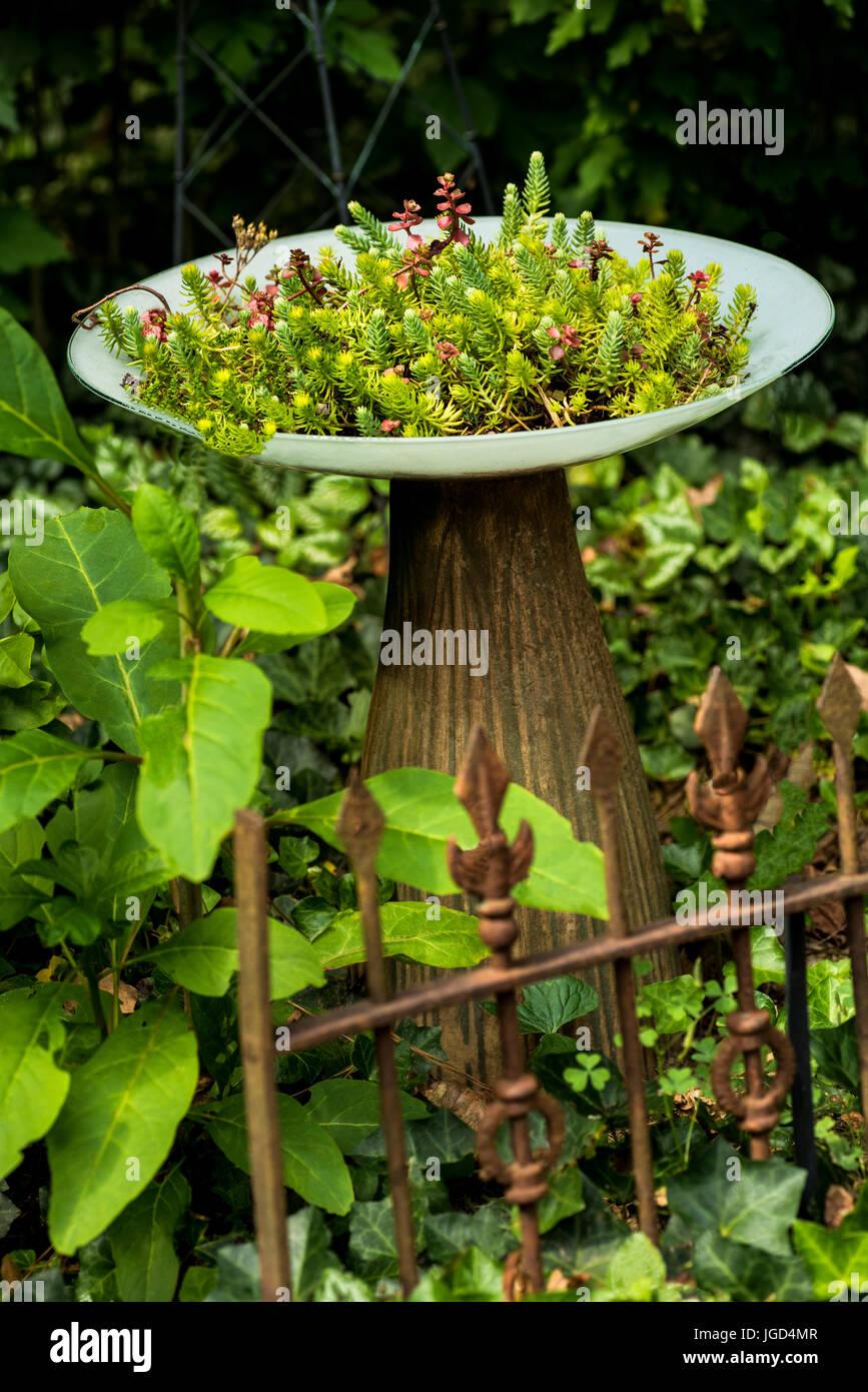 Gardening Fence Stockfotos & Gardening Fence Bilder Seite 12 Alamy