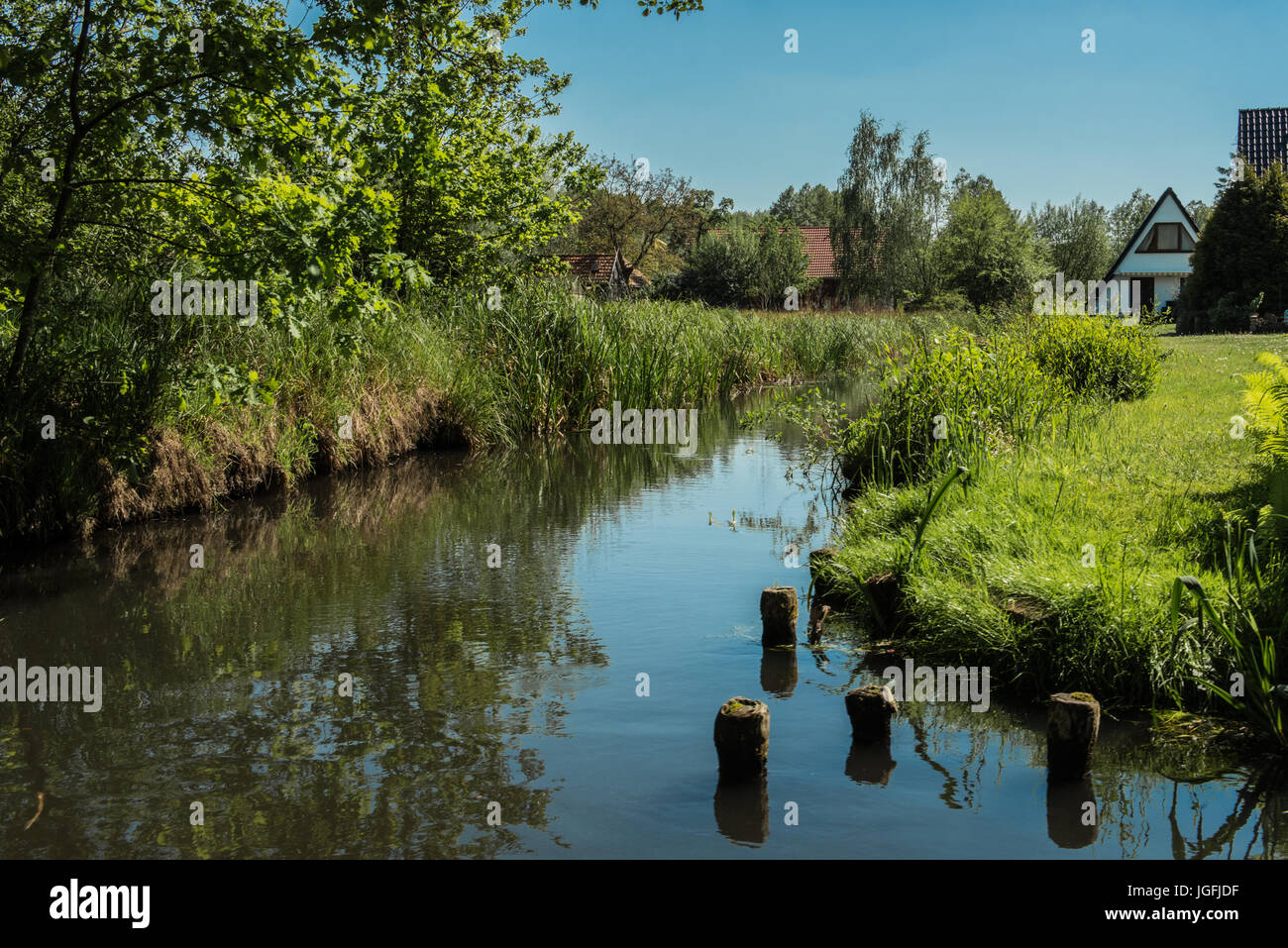 Blauer Himmel über Fluss mit Bäumen und Reflexion Stockfoto