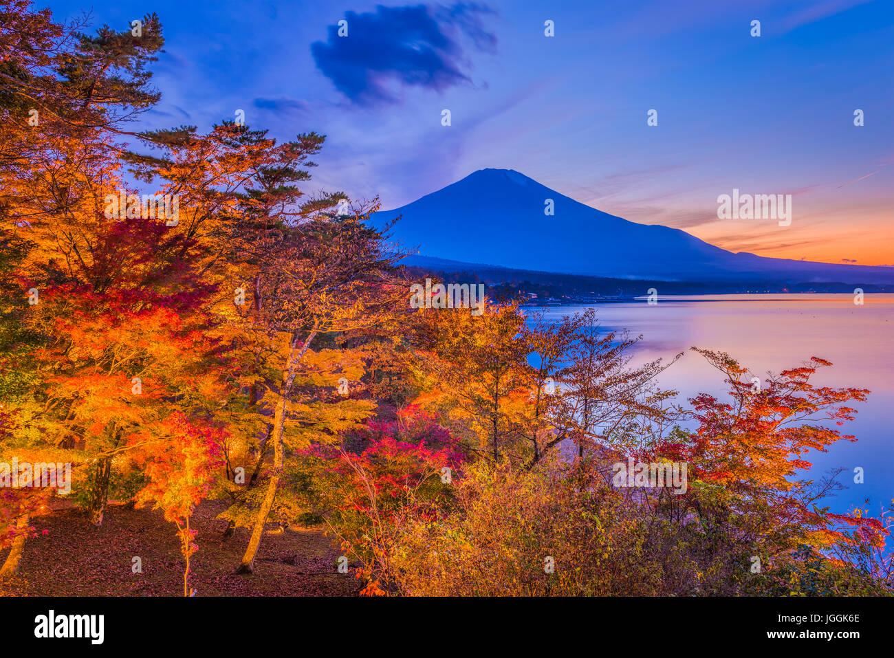 Mt. Fuji, Japan im Herbst. Stockbild