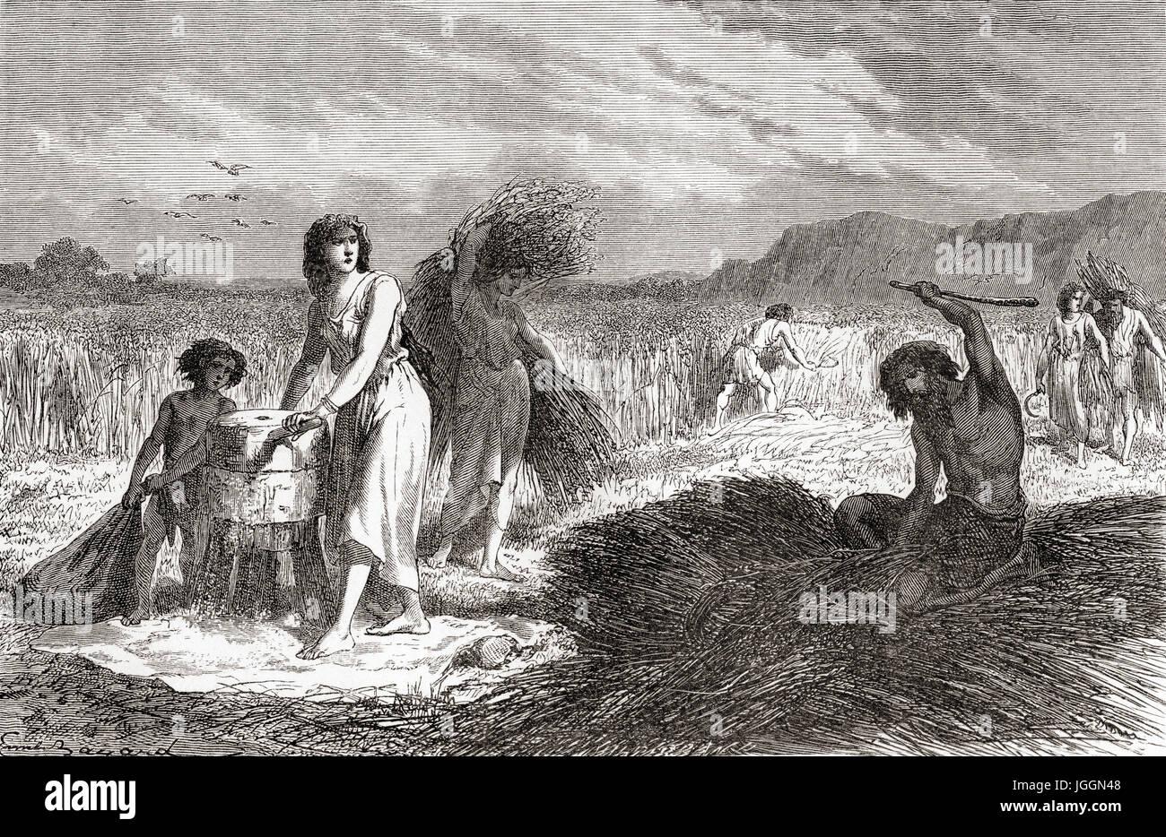 Landwirtschaft in der Eisenzeit.  L ' Homme Primitif veröffentlichte 1870. Stockbild