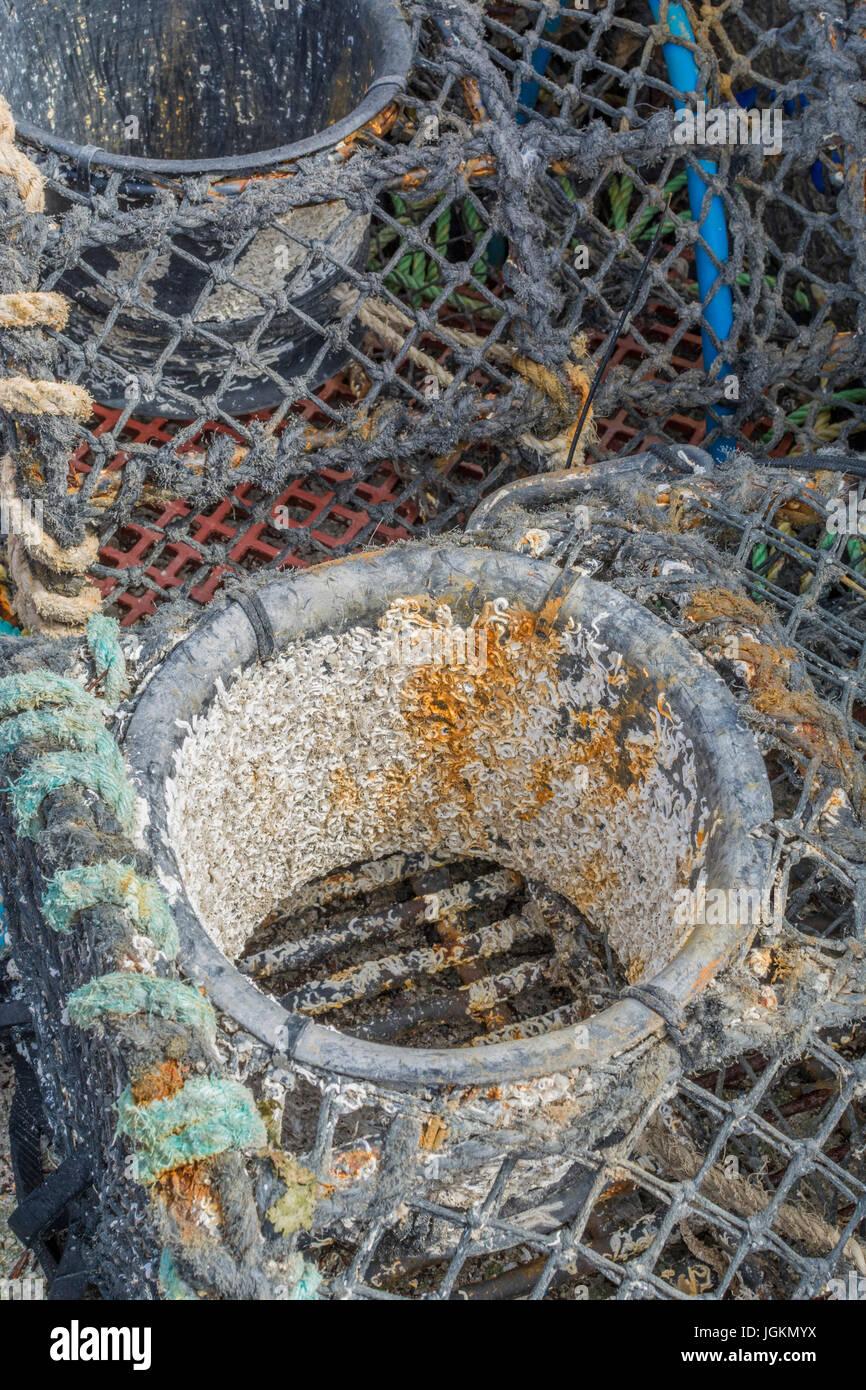 Detail des Trichters Angeln Topf am Kai im Hafen von Newquay, Cornwall zu schließen. Stockbild