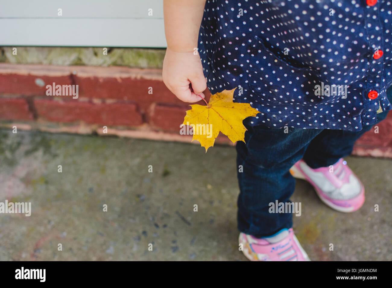 Ein junges Kind halten ein gelbes Blatt im Herbst. Stockbild