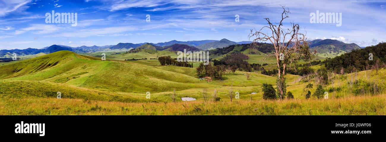 Breites Panorama der australischen ländlichen landwirtschaftlicher Flächen für das Wachstum von Rindern mit Bauernhof, Stockfoto