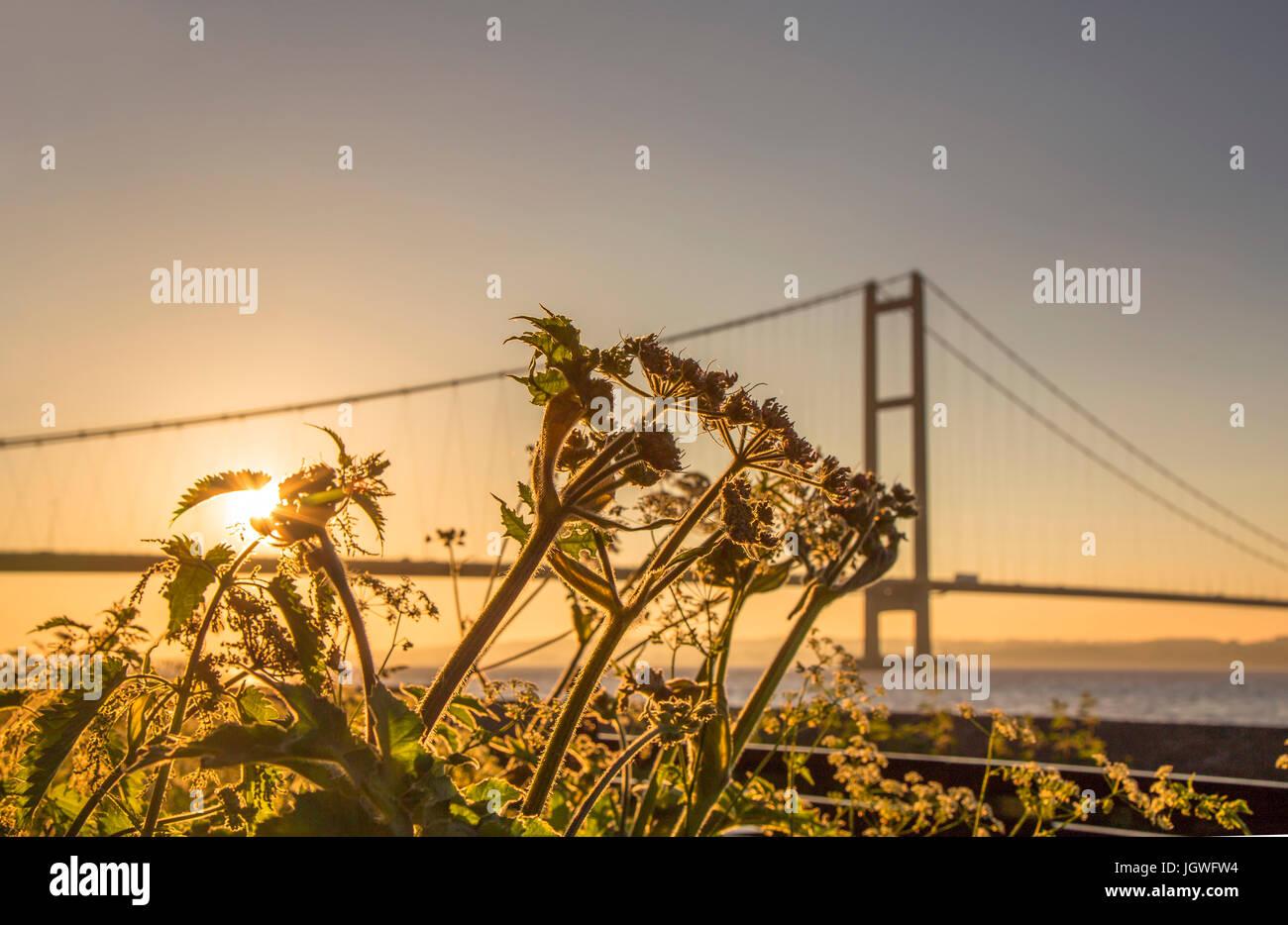 Humber Bridge Sonnenuntergang Stockbild