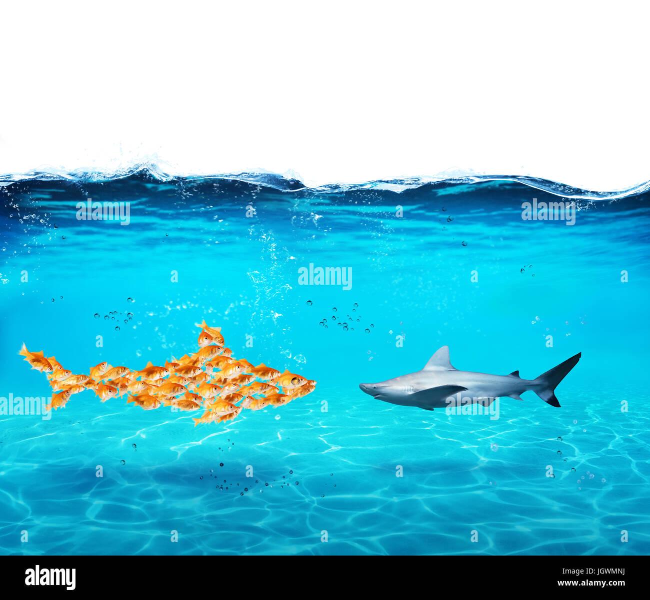 Großen Hai von Goldfischen gemacht. Konzept der Einheit ist Stärke, Teamwork und Partnerschaft Stockbild