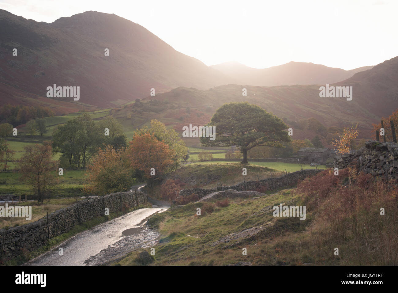 Landstraße durch kleine Langdale, The Lake District, UK Stockbild
