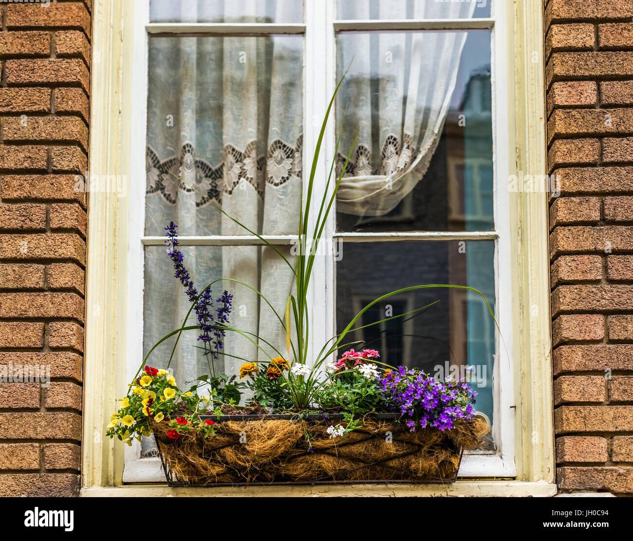 Blumen Korb Closeup Auf Fensterbank Aussen Ziegel Europaische Gebaude