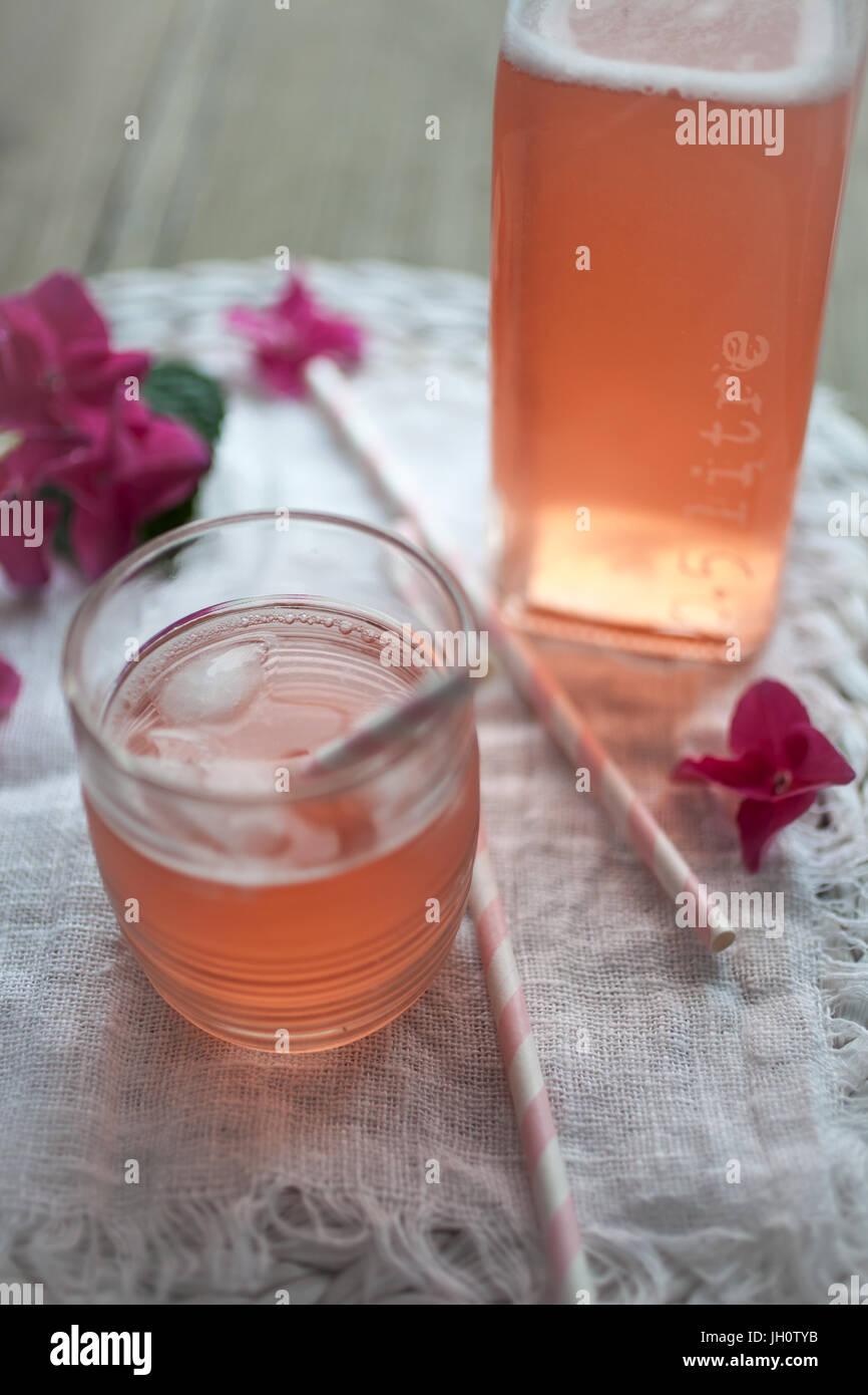 Hausgemachten Saft mit Rhabarber und Erdbeeren Stockbild