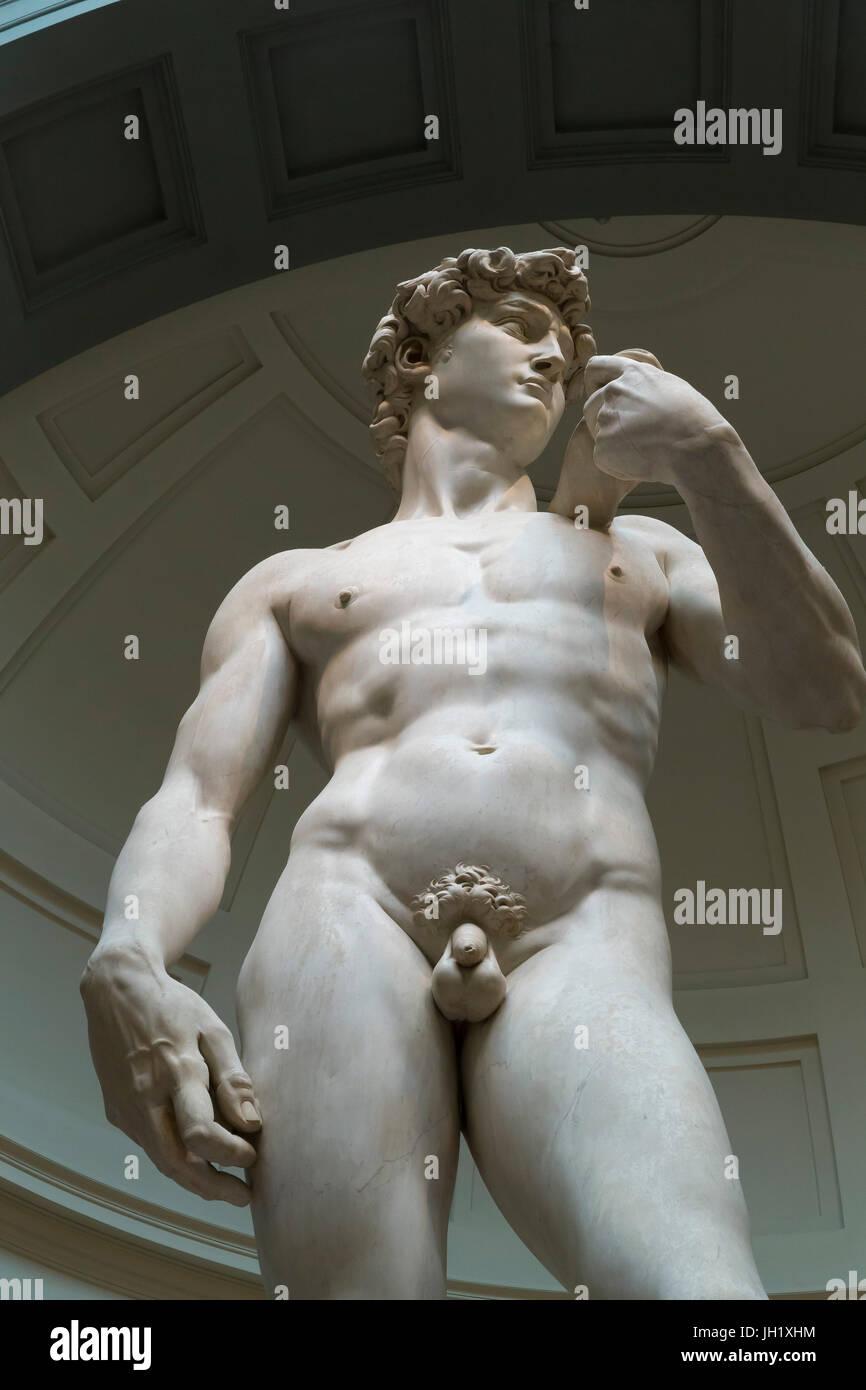 Marmor Skulptur des David von Michelangelo, 1501-1504, Accademia Galerie, Florenz, Toskana, Italien, Europa Stockbild