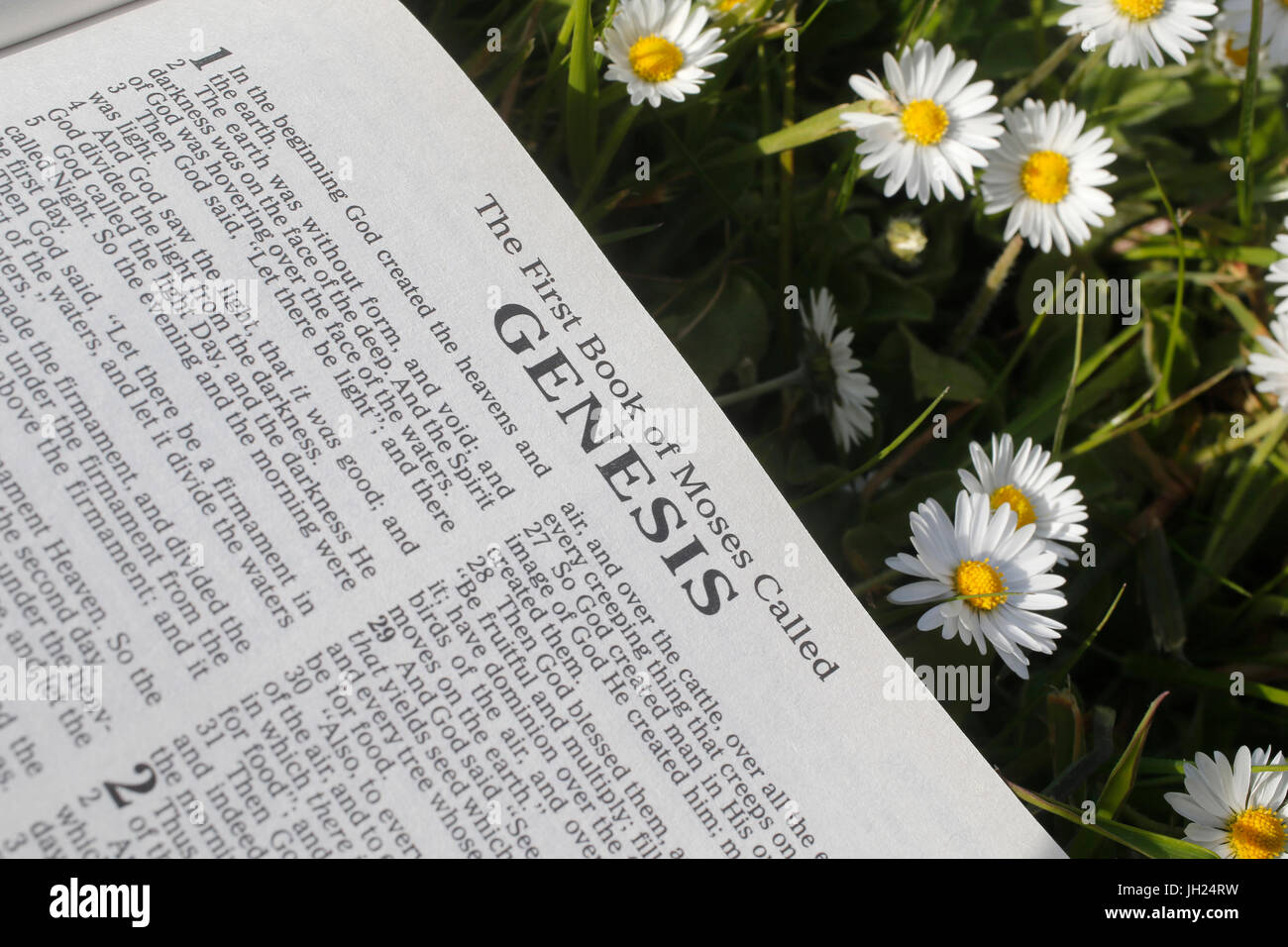 Aufgeschlagene Bibel. Genese. Stockbild