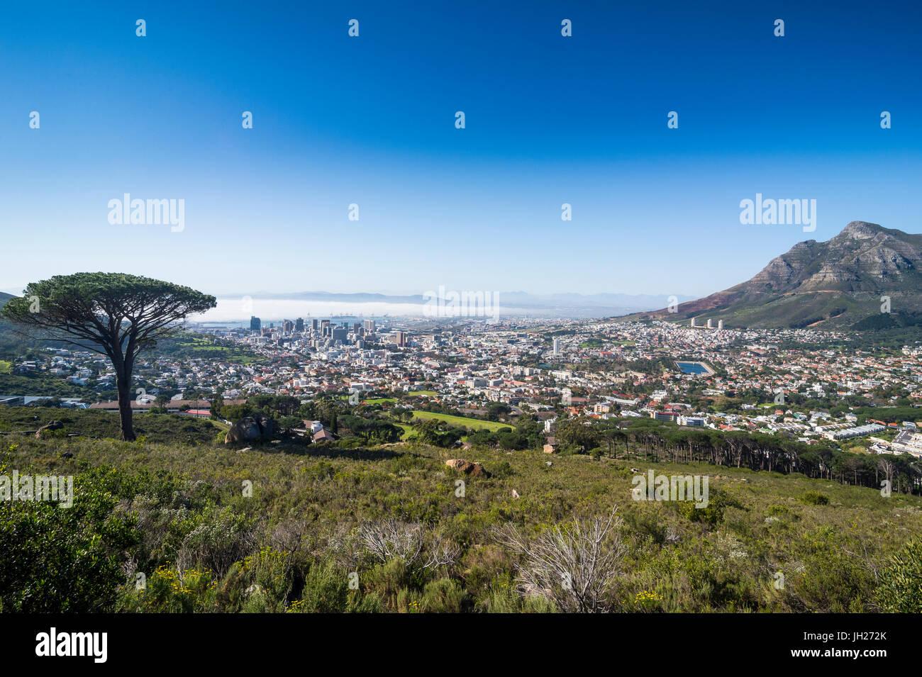 Blick über Kapstadt, Südafrika, Afrika Stockbild