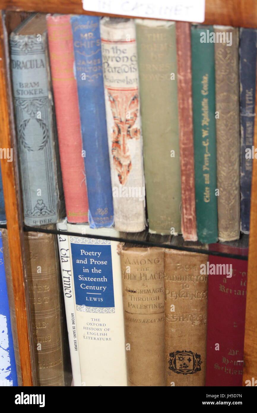 Klassische Bücherregale bücher auf regal bücherregal bücherregal alte bücher bücherwurm