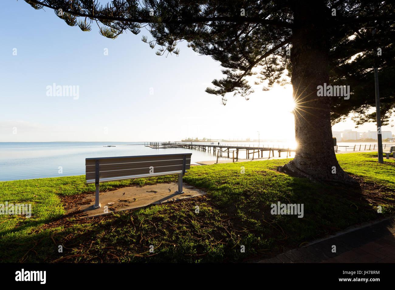 Eine leere Parkbank mit Blick auf das Meer unter einem schönen Baum zurück durch beleuchtet helle Sonnenaufgang Stockbild