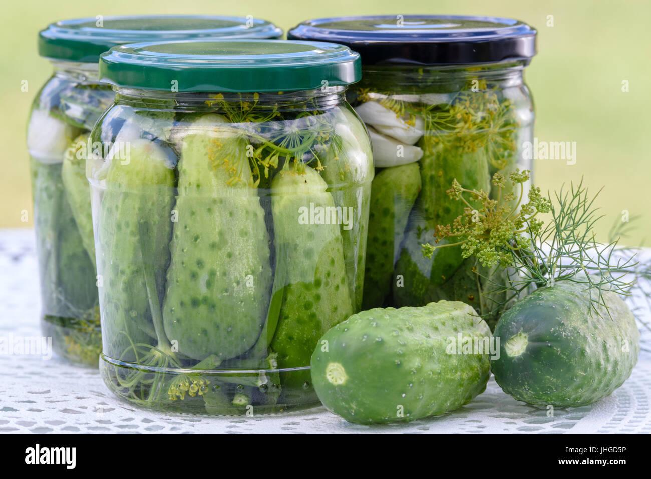 Das Konzept der hausgemachten bewahrt - Gläser von sauren Gurken auf einem Tisch neben rohen grünen Boden Stockbild