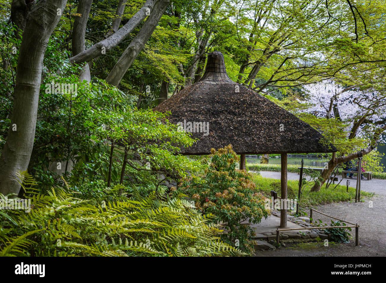 Die Koishikawa K?rakuen Gärten in Bunkyo, Tokio, Japan. Stockbild