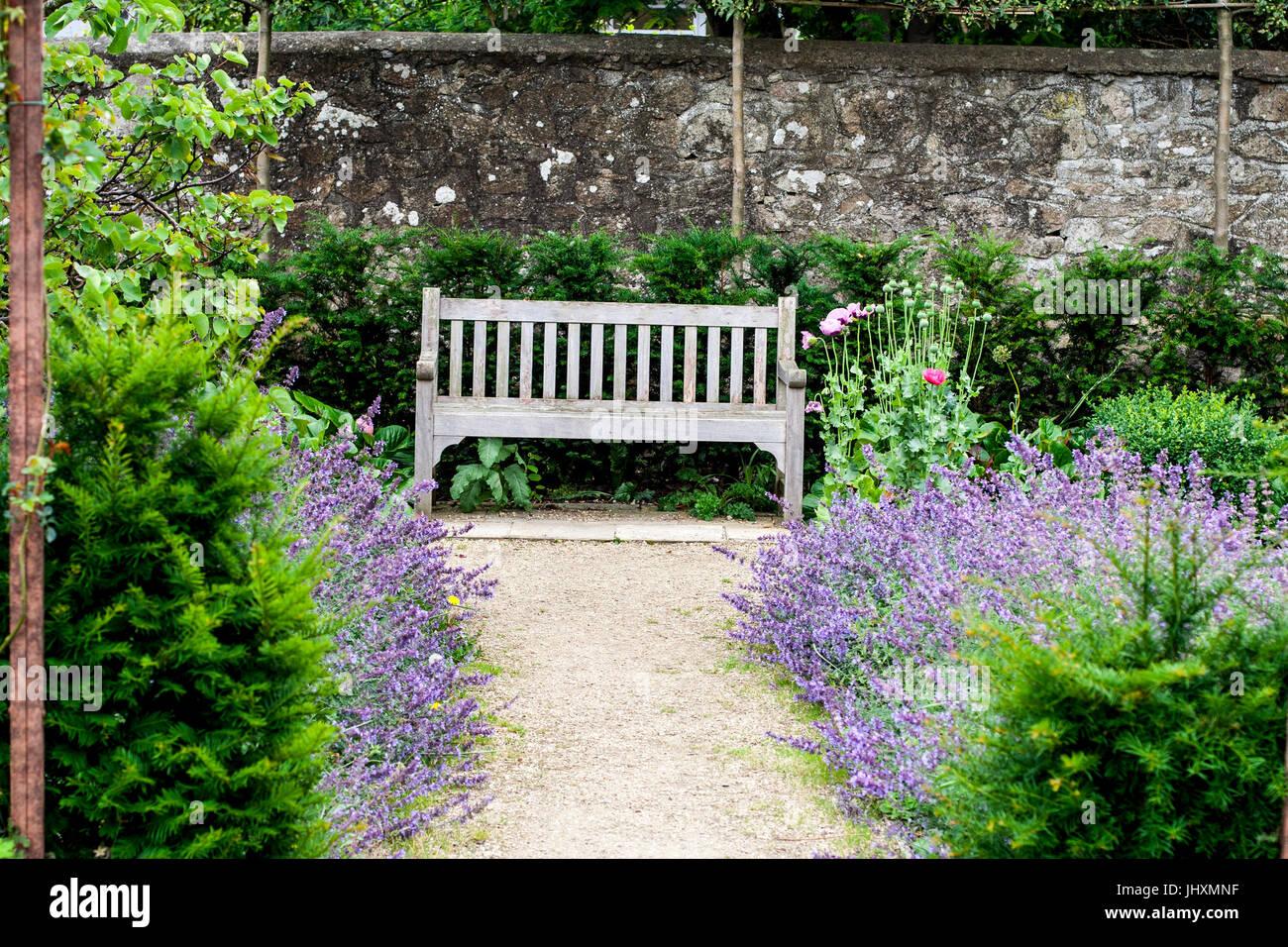 garten mit steinmauer und üppigen lila und grün pflanzen und hecken
