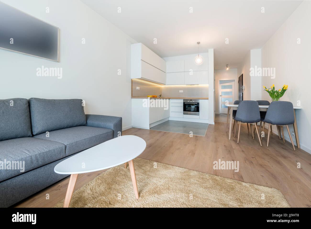 Moderne Wohnzimmer Und Kuche In Kleinen Wohnung Stockfoto Bild