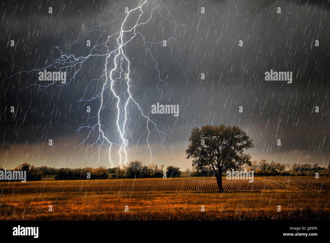 Blitze über Feld Stockbild