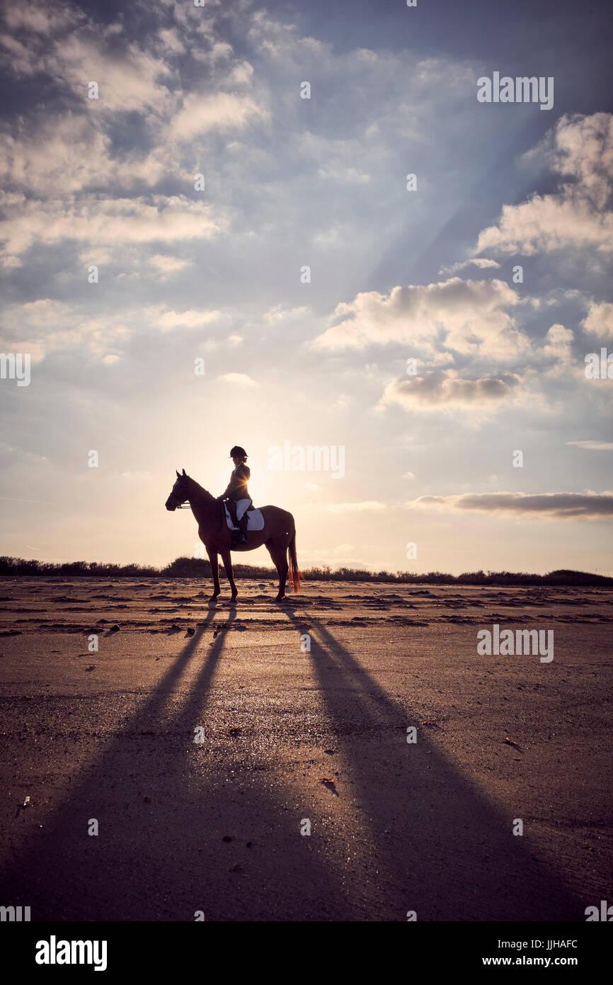 Eine junge Frau, die ihr Pferd am Strand bei Sonnenuntergang zu reiten. Stockbild