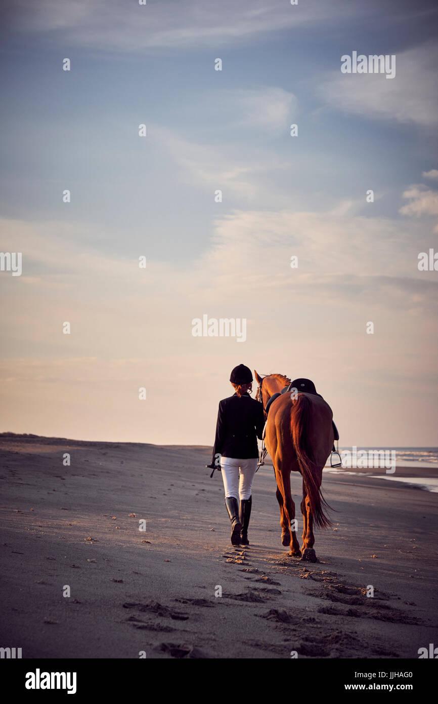Eine junge Frau mit ihrem Pferd zu Fuß am Strand. Stockbild