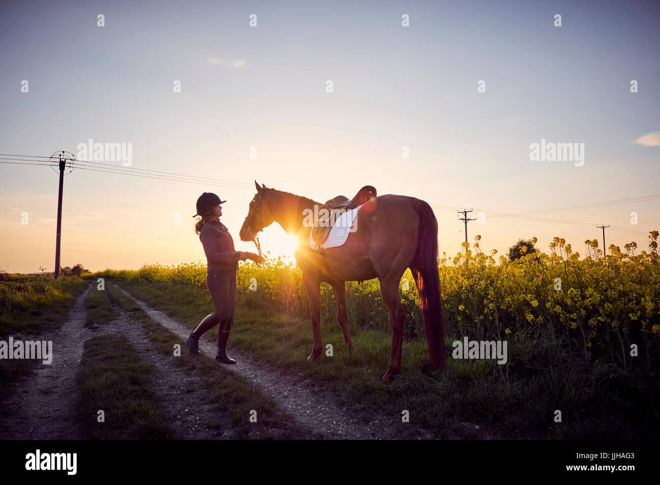 Eine junge Frau mit ihrem Pferd neben einem Feld von gelben Raps. Stockbild