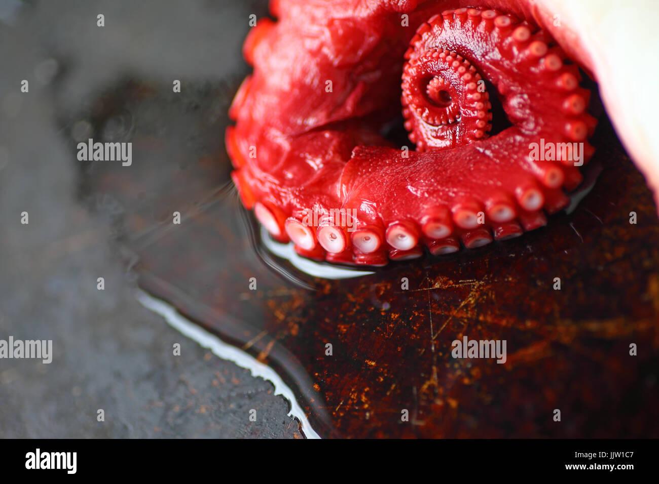 Ein Octopus Tentacle auf einem Tablett mit Wasser und Kopie Stockbild