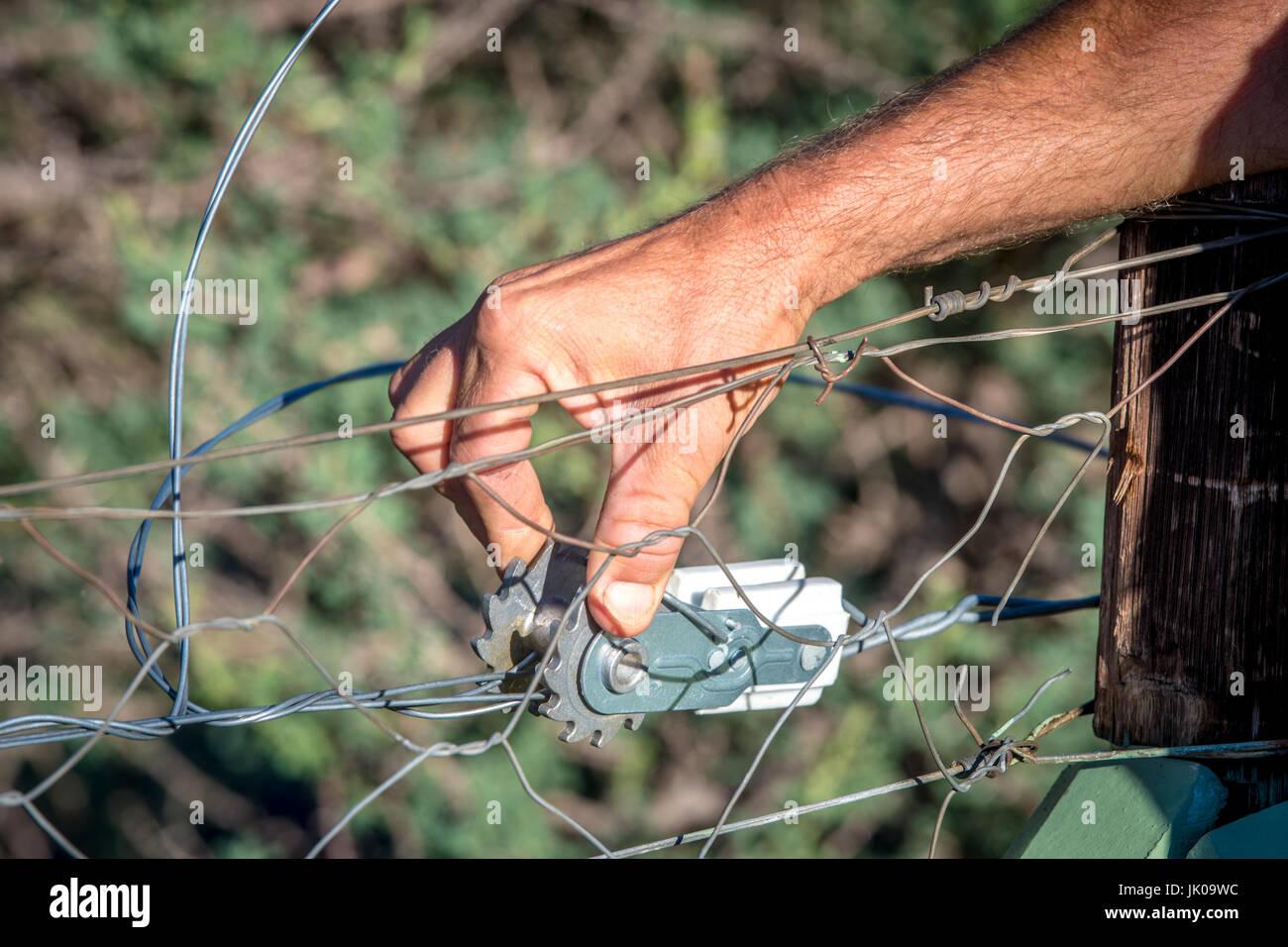Landwirt Überprüfung Elektrozaun Draht Bahre auf Einzäunung bei ...