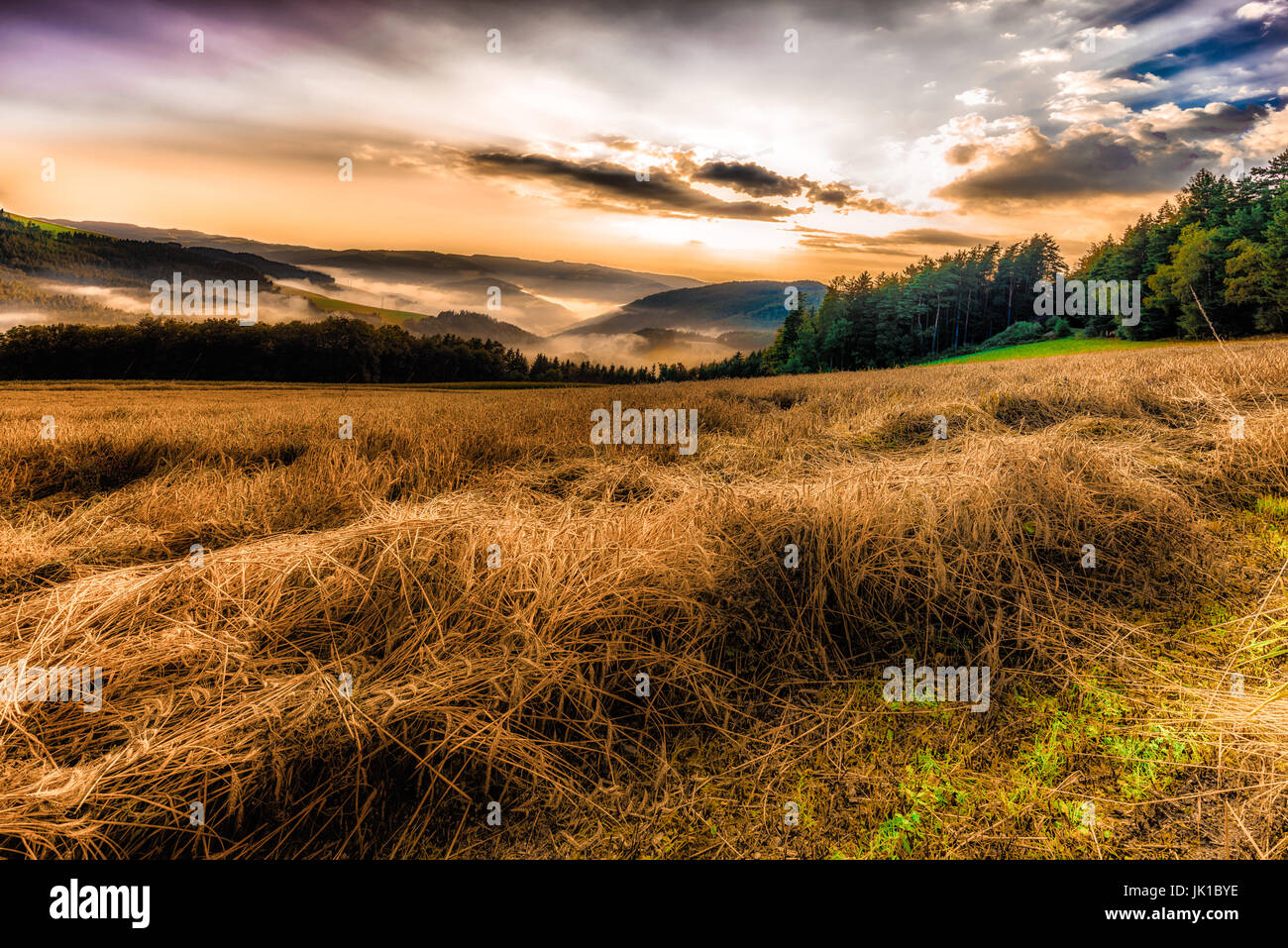 Neblig Farbe Panorama malerische goldenen Sonnenaufgang über Heu Felder, Täler, Hügel und Wald Stockbild