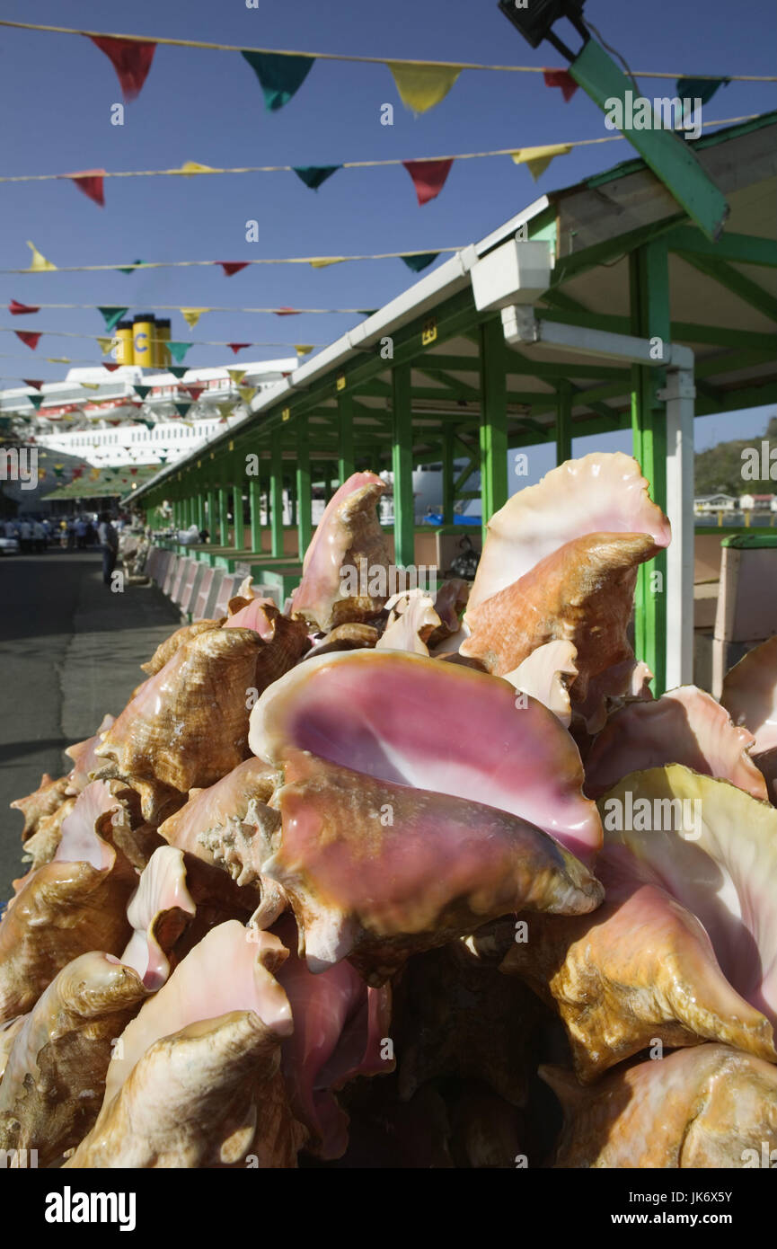 Hafen, leer, Conch Muscheln Meeresschnecken, Muscheln, Schnecken, Gehäuse, Kalkgehäuse, Kalkschale, Fechterschnecken, Stockbild