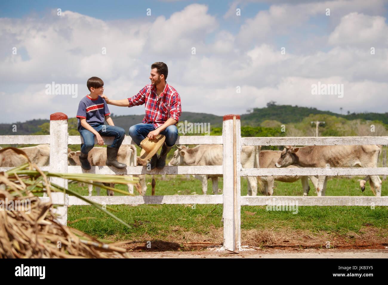 Alltag für Bauer mit Kühen auf dem Lande. Bauer arbeiten mit Tieren in Ranch der Familie Land in Südamerika. Stockbild