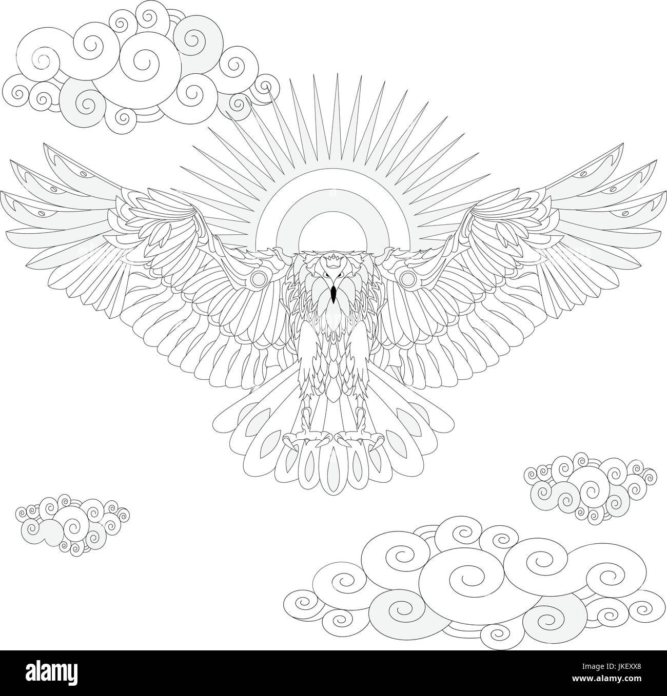 Adler Vogel Malbuch Für Erwachsene Illustration Vektor Anti Stress