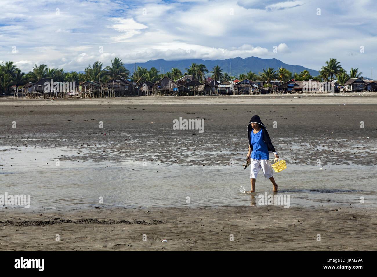 Philippinische Frau sammelt Muscheln bei Ebbe in Cadiz City, Negros Occidental, Philippinen. Stockbild