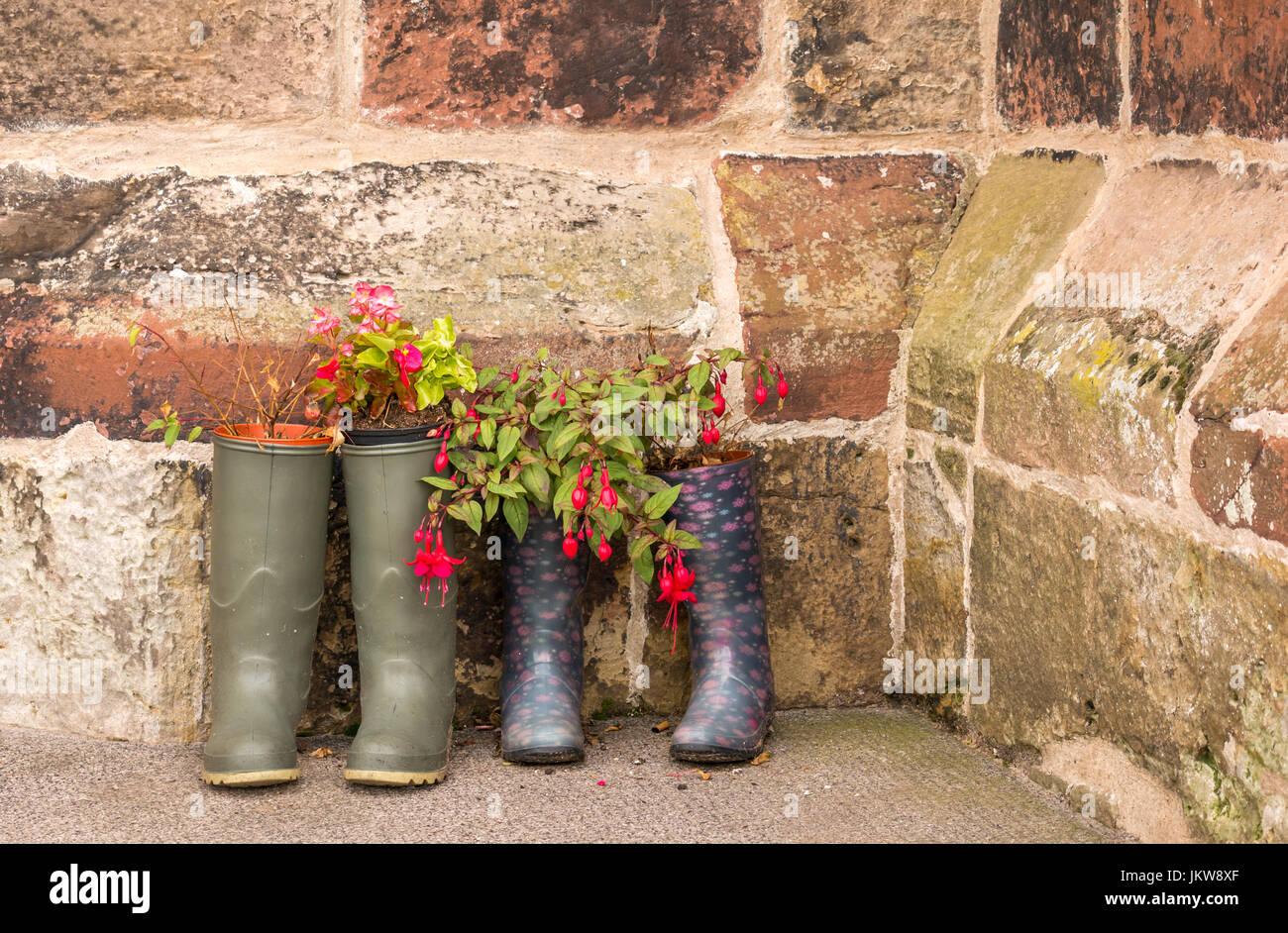 Paare von wellingtons wie ungewöhnliche Blumentopf Behälter außerhalb der alten Kirche, der Kirche Stockbild