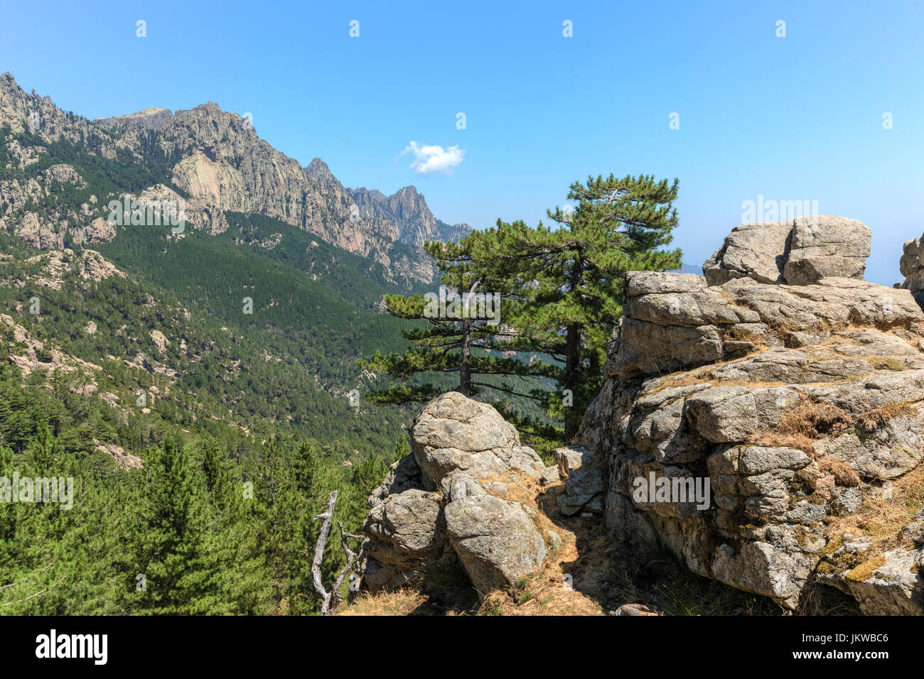 Aiguilles de Bavella, Parc Naturel regional de Corse, Korsika, Frankreich Stockbild