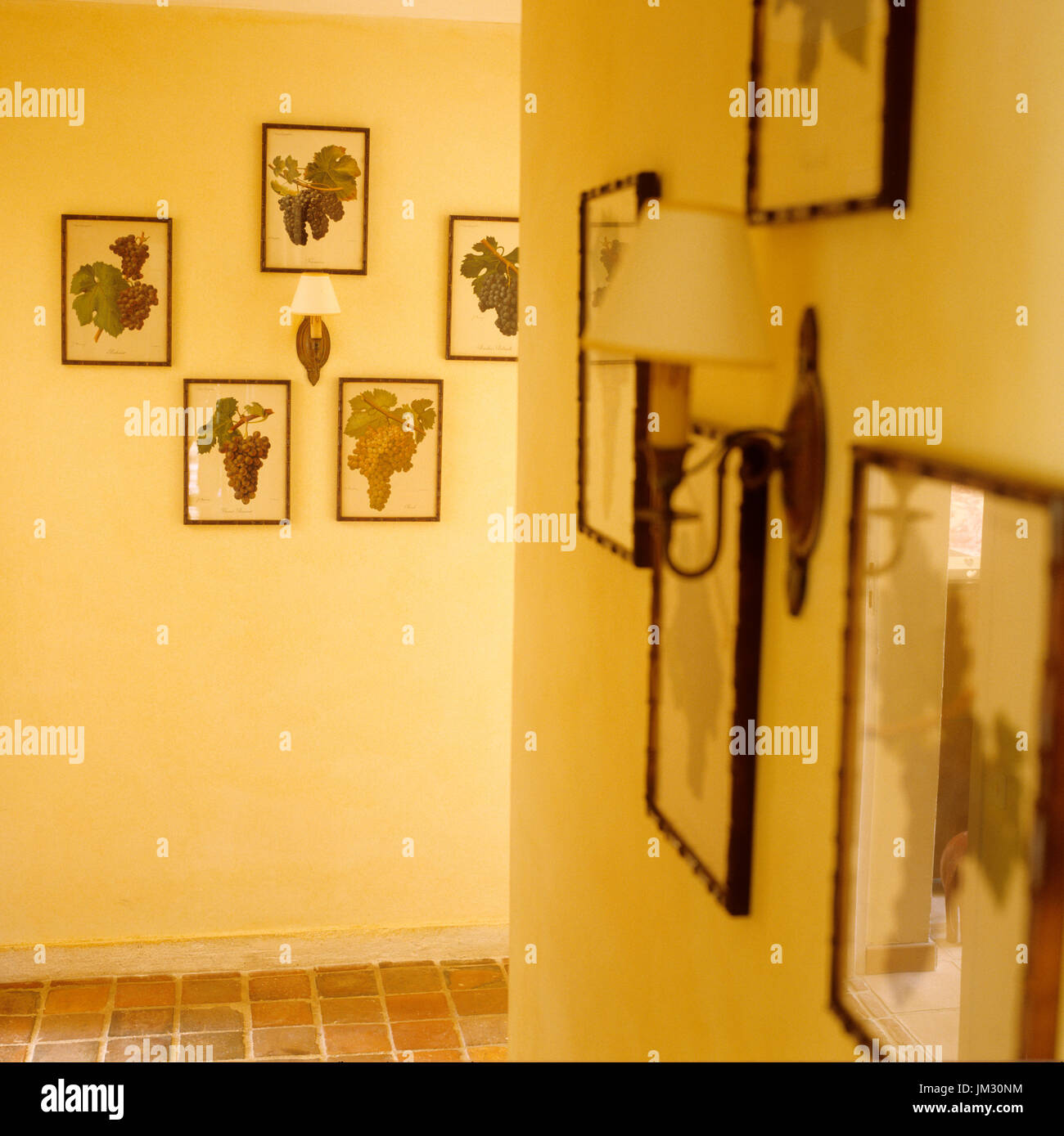 Muted stockfotos muted bilder alamy - Gelbe flecken an der wand ...
