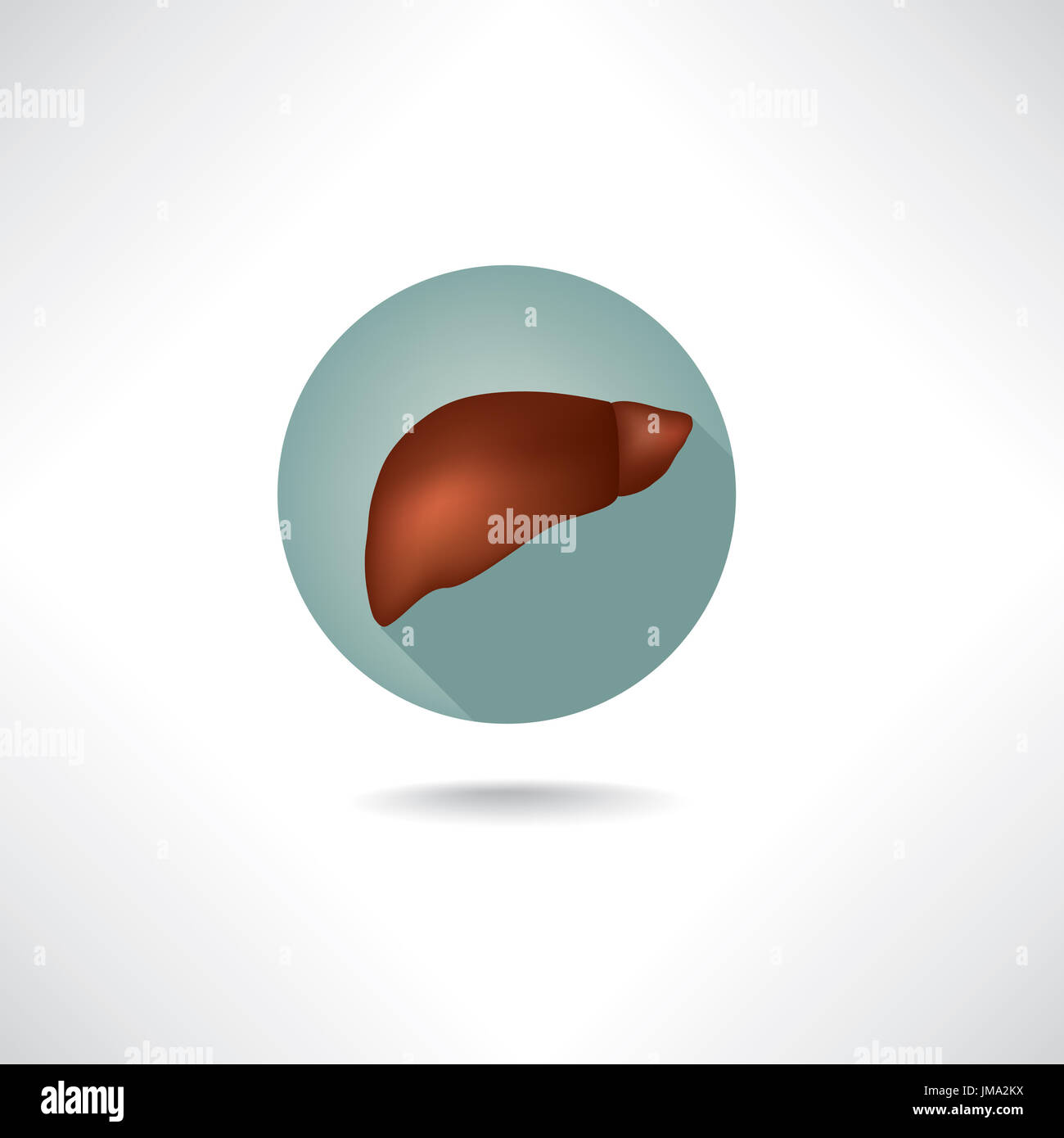 Leber Symbol. der menschlichen Anatomie Web Buttons gesetzt ...