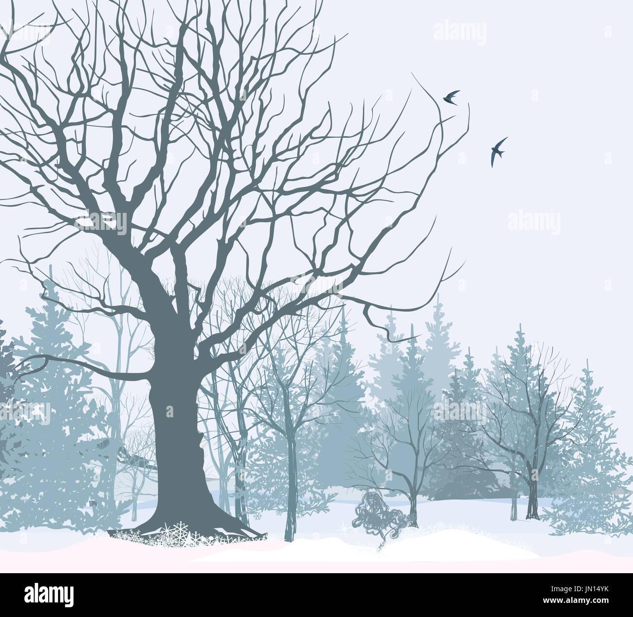 Weihnachten Schnee Landschaft Wallpaper. Verschneiten Wald ...