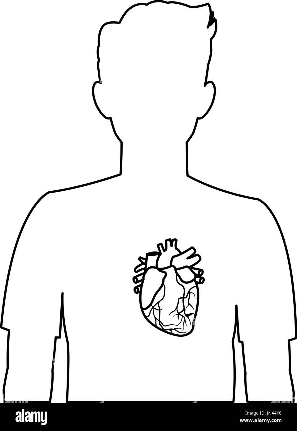 Gallbladder Kidney Stockfotos & Gallbladder Kidney Bilder - Seite 2 ...