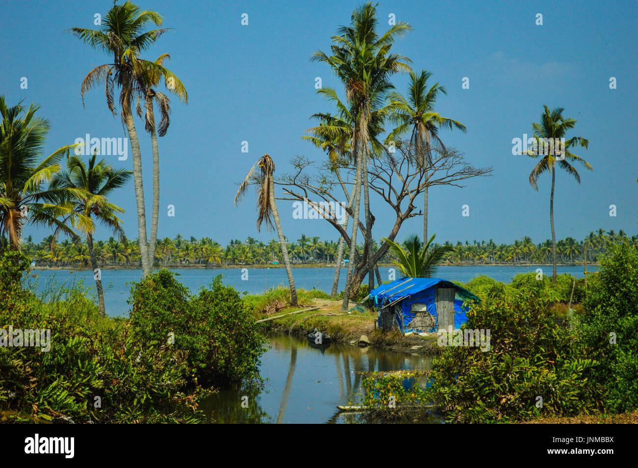 Green - A Mind Erwärmung Klick von Cochin Backwaters zu leben. Stockbild