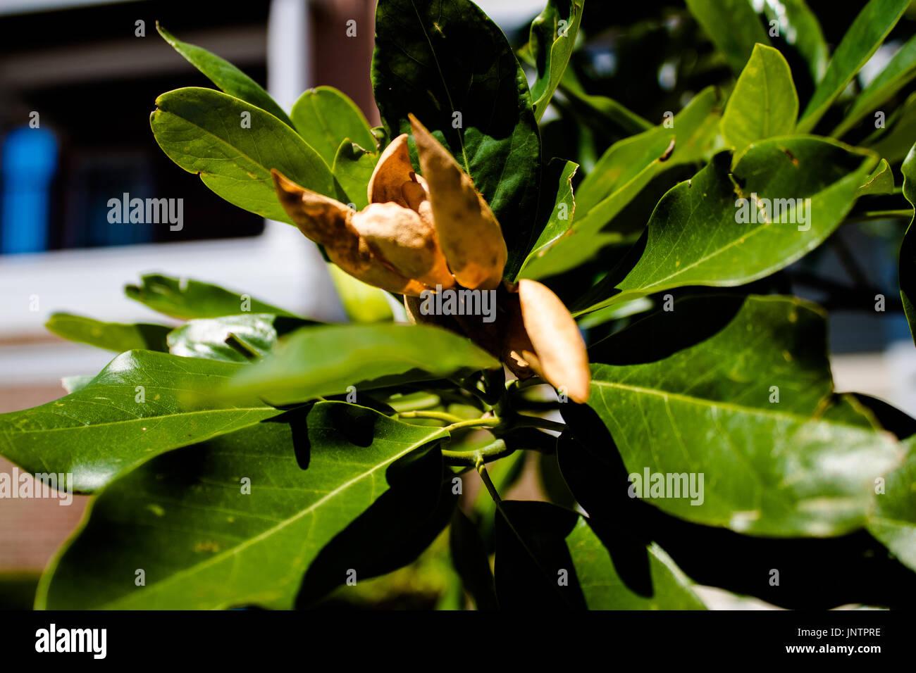 Off Dry Stockfotos & Off Dry Bilder - Seite 38 - Alamy